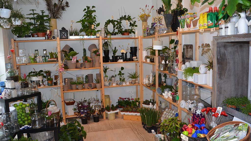 Blomster til alt og butikkens varelager